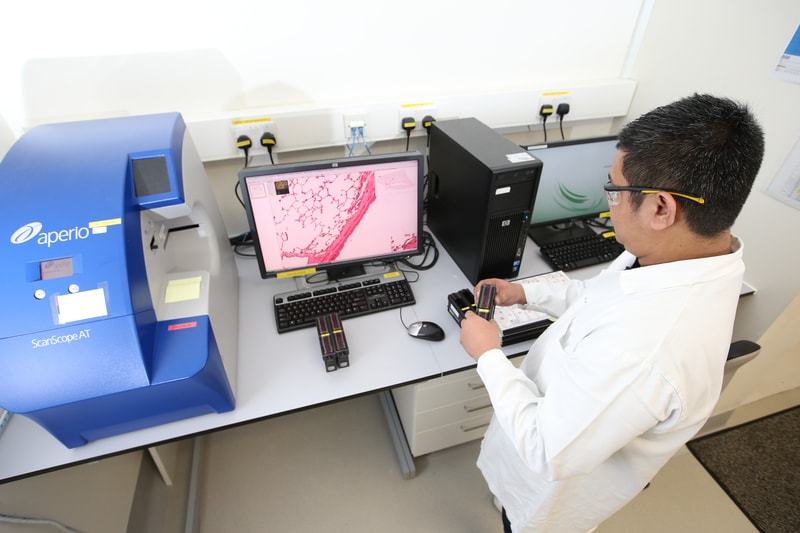 Scientist working with tissue samples